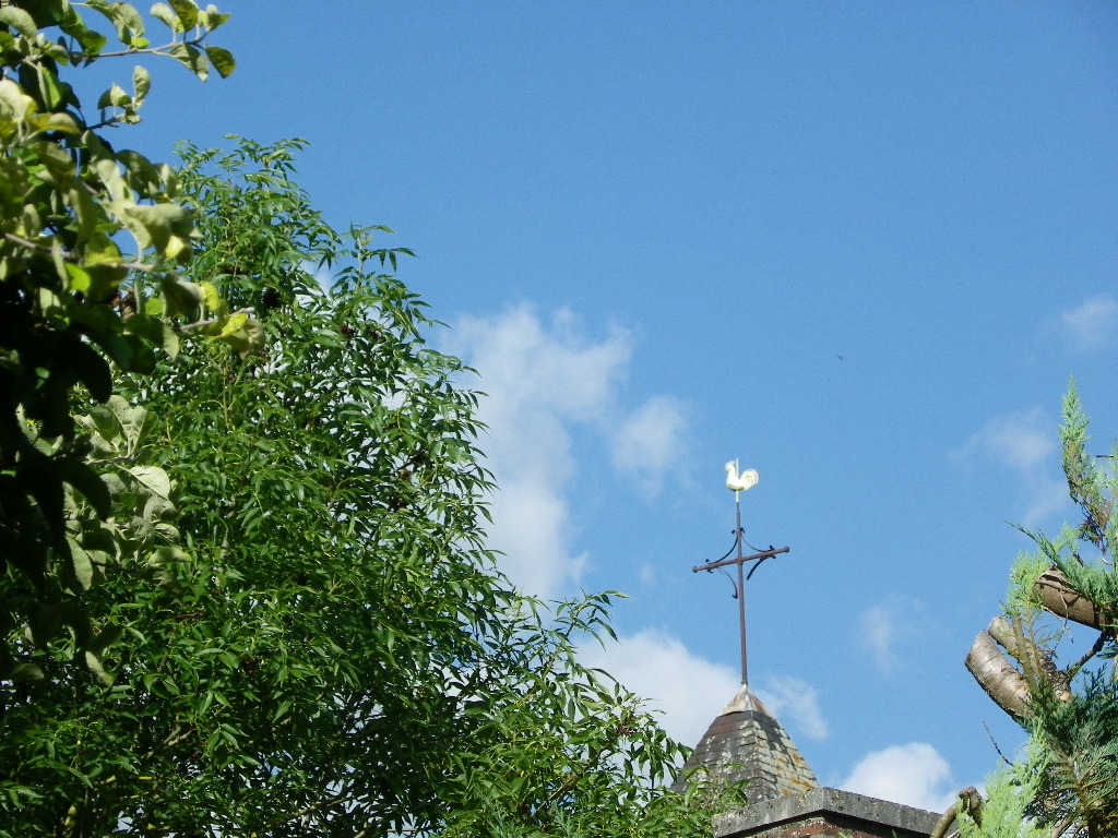 coq de l'église d'Avant-lès-Marcilly